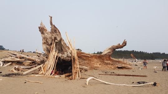 בית מאולתר בחוף הים